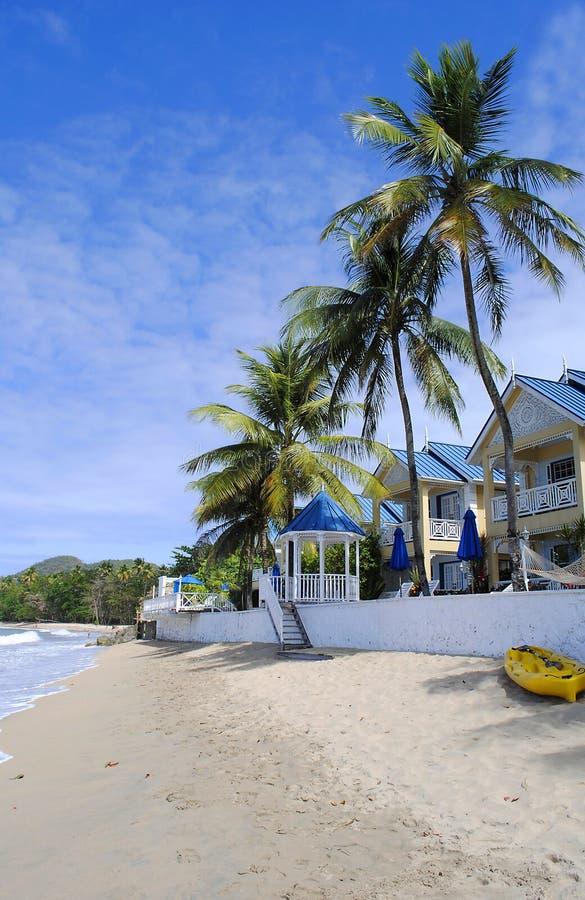 Ijsvogelstrand in St Lucia royalty-vrije stock foto