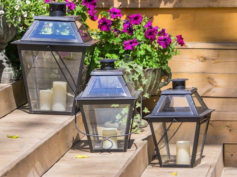 Ijzerlampen voor kaarsen en bloemenpetunia royalty-vrije stock foto's