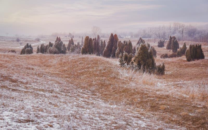 Ijzig de winterlandschap stock foto's