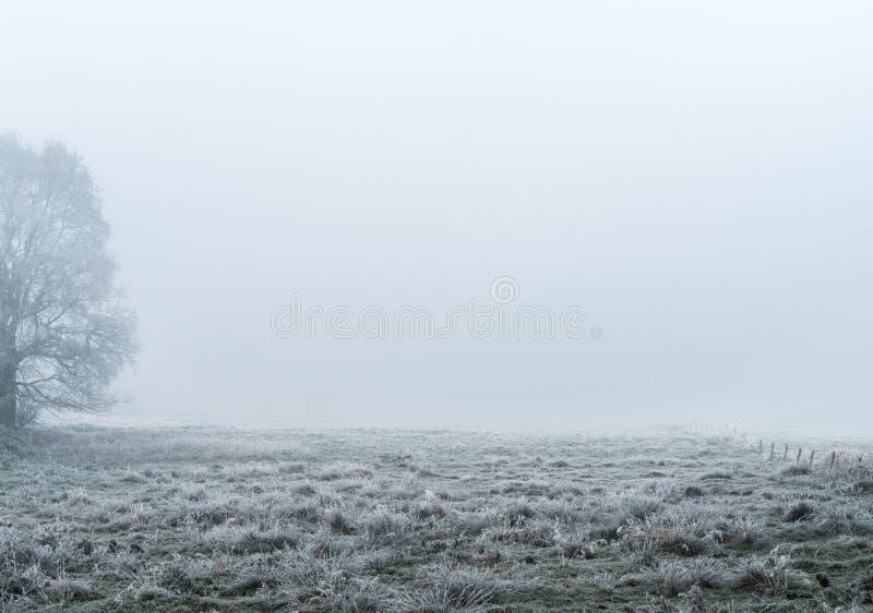 Ijzig land in de mist royalty-vrije stock afbeelding