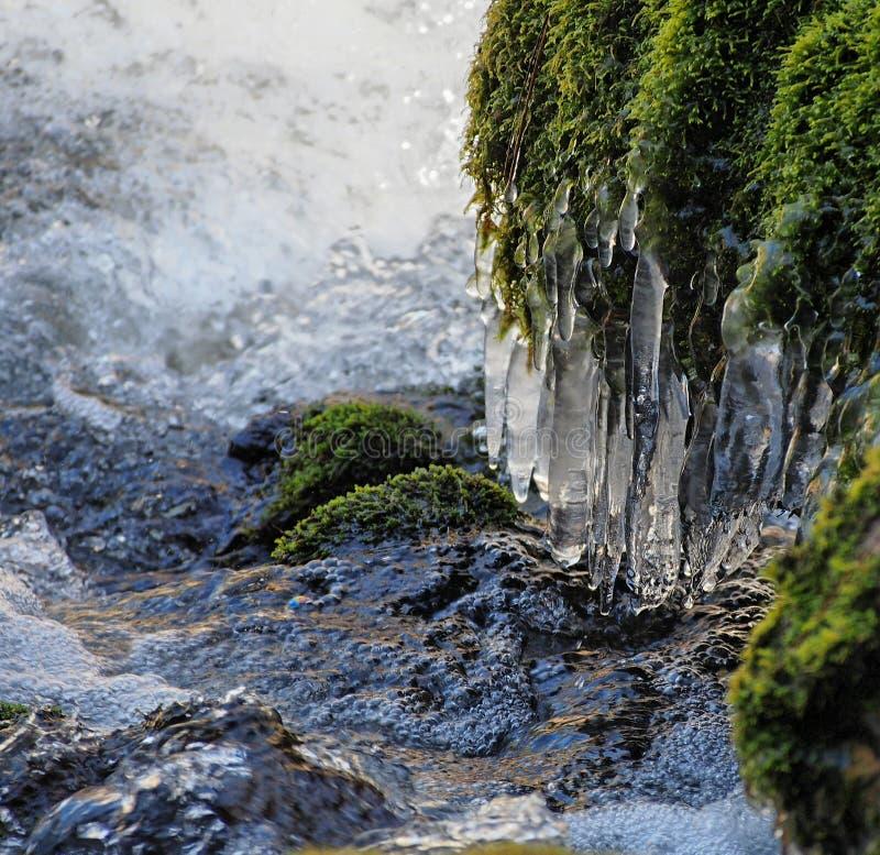 Ijzige ochtend in Dillon Falls stock afbeeldingen