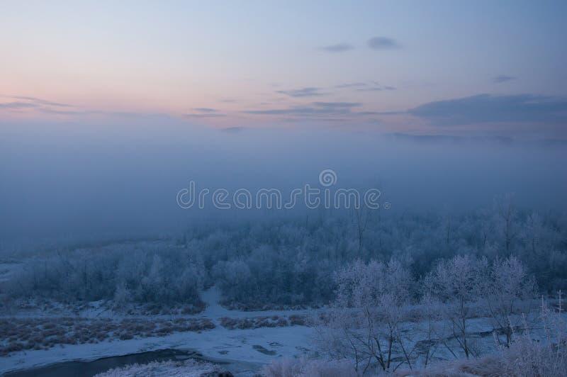 Ijzige ochtend Krasnoyarsk Ijzige dag op het eiland royalty-vrije stock fotografie