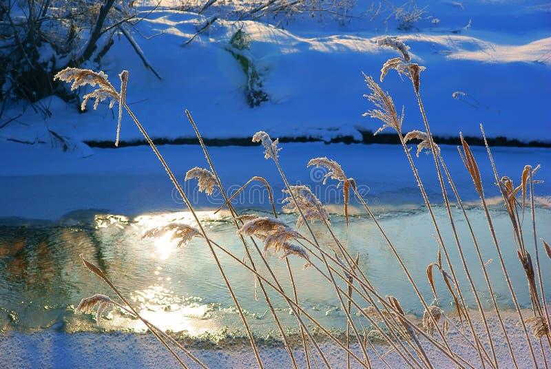 Ijzige ochtend, Kudma-rivier Rusland royalty-vrije stock foto
