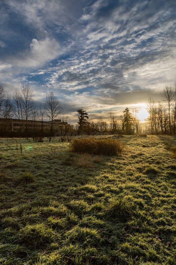 Ijzige ochtendzonsopgang met de korte binnen bouw op linker en grasrijk gebied in de voorgrond op de Sammamish-Riviersleep stock afbeelding