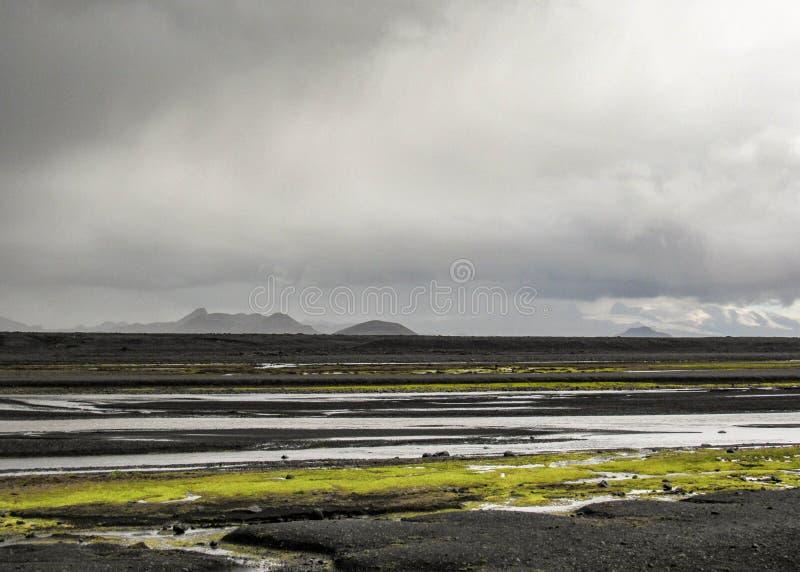 Ijzige rivier in zwarte zandwoestijn met heldergroene mosvegetatie in Hooglanden van IJsland, Europa stock afbeeldingen