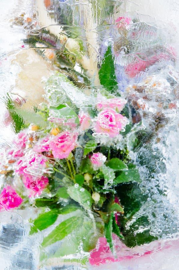 Download Ijzige rozen stock foto. Afbeelding bestaande uit kristal - 29503638