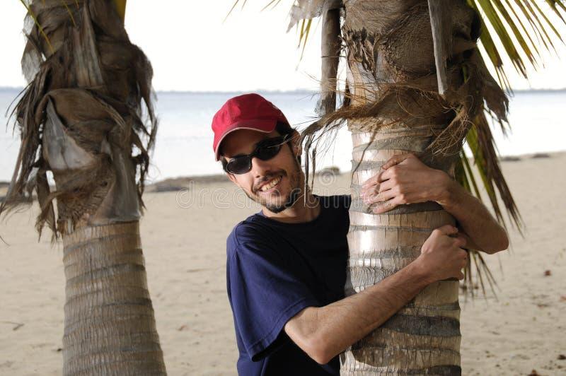 Ik houd van deze palm royalty-vrije stock afbeelding