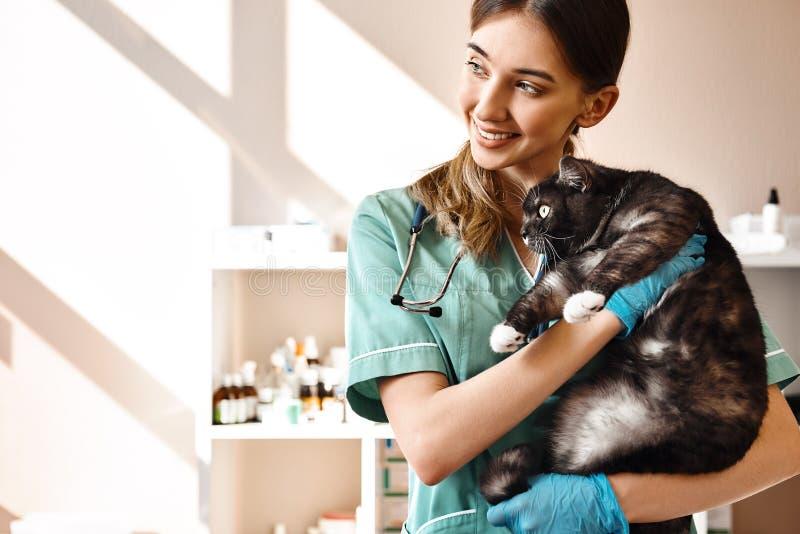 Ik houd van elk van mijn patiënten! Glimlachende vrouwelijke dierenarts die een grote zwarte pluizige kat in haar handen houden d royalty-vrije stock afbeelding