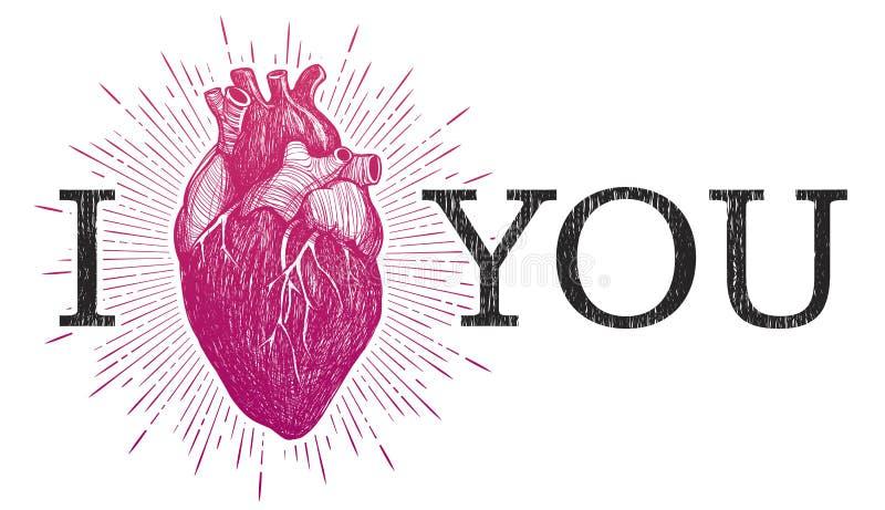 Ik houd van u met menselijk anatomisch hart stock illustratie