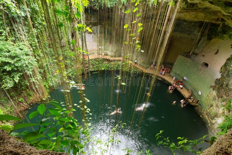 Download Ik-Kil Cenote stock image. Image of mayan, hole, light - 21030547