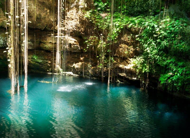 Ik-Kil Cenote, Messico fotografia stock libera da diritti
