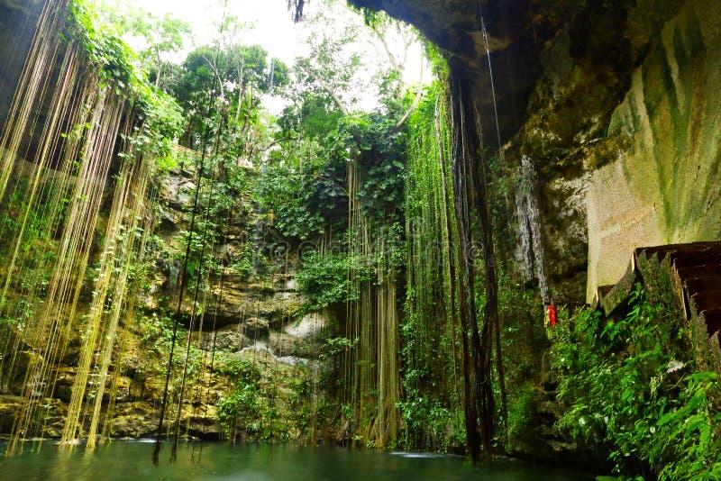 Ik-Kil Cenote Nahe Chichen Itza Stockfotos
