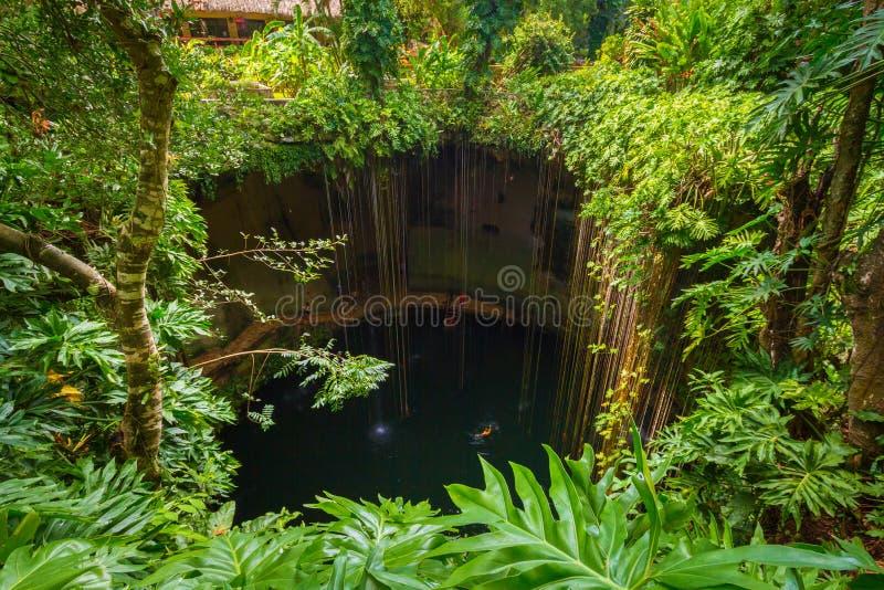 Ik-Kil Cenote perto de Chichen Itza imagens de stock