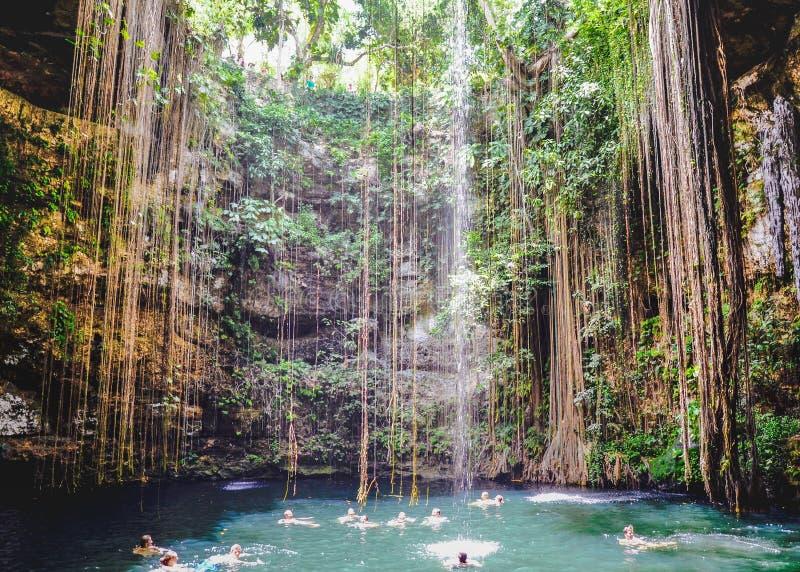 Ik Kil Cenote, Yucatan, Messico fotografia stock libera da diritti