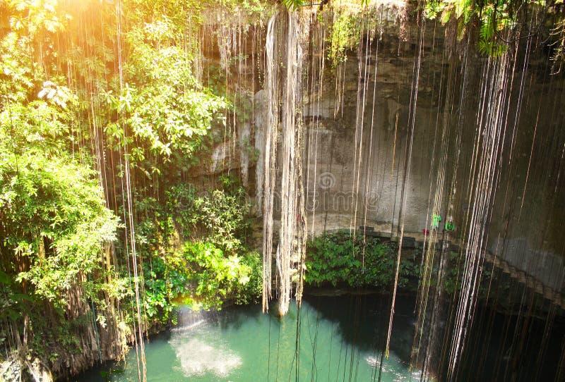 Ik-Kil cenote, Yucatan, Mexico royalty free stock image