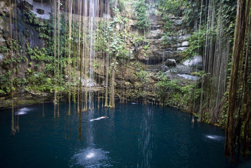 Ik-kil cenote Yucatan Mexiko stockfotografie