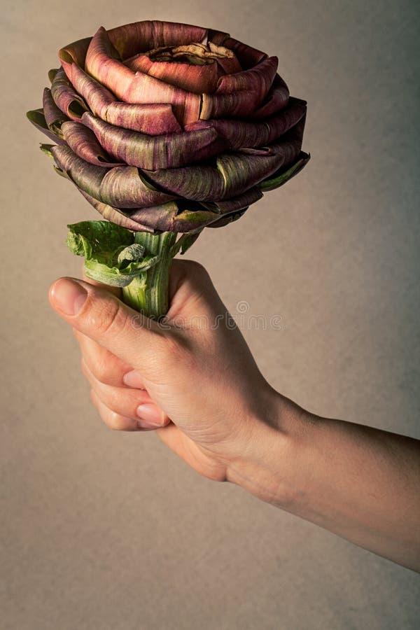 Ik zal u een artisjokbloem geven Vegetariër, veganistconcept Hand stock fotografie