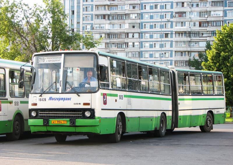 Ikarus 280 33M 库存照片