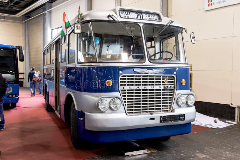 Ikarusbus royalty-vrije stock foto's