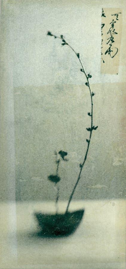 Ikebana vector illustratie
