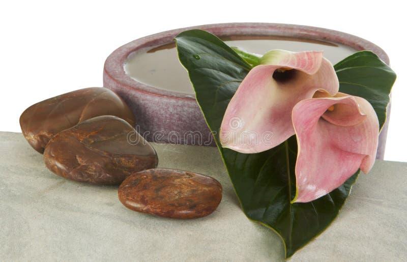 ikebana στοκ εικόνες