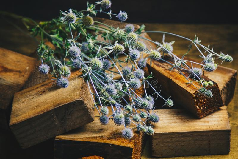 Ikebana Bouquet des fleurs sèches épineuses dans une pile des barres en bois la vie toujours des fleurs et du bois fin bleue d' images stock