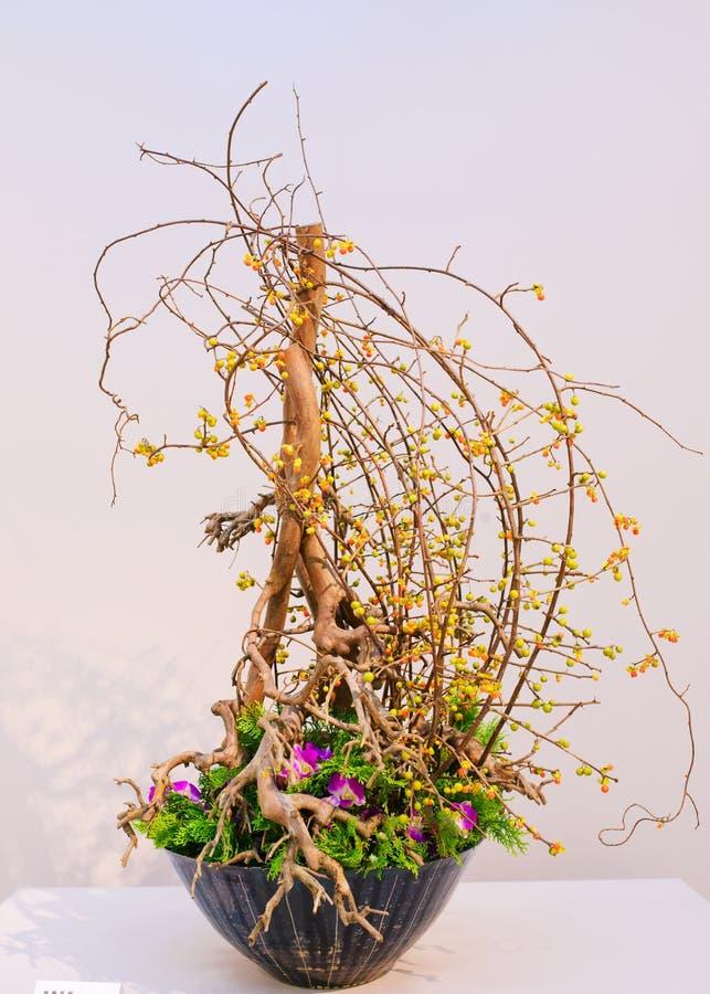 Ikebana centro de flores fotos de archivo