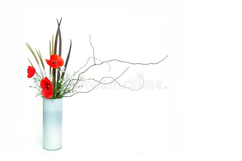 Ikebana de pavot images stock