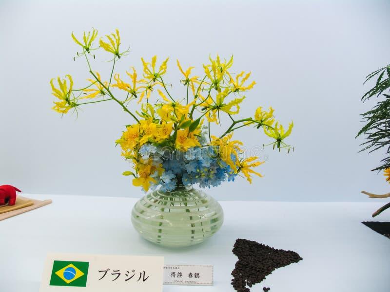 Ikebana Dvärg- träd i krukor royaltyfri bild