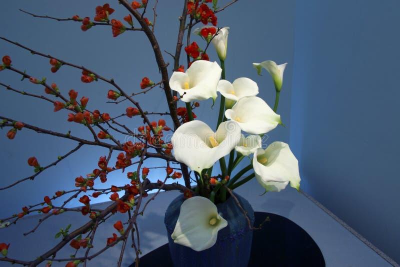 Ikebana japonés hermoso imagen de archivo libre de regalías