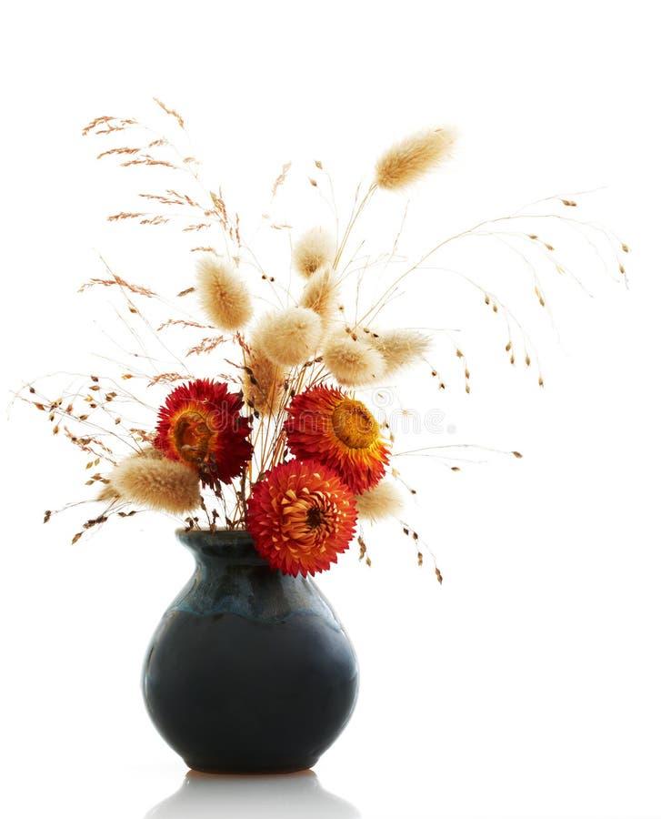Ikebana su bianco fotografia stock libera da diritti