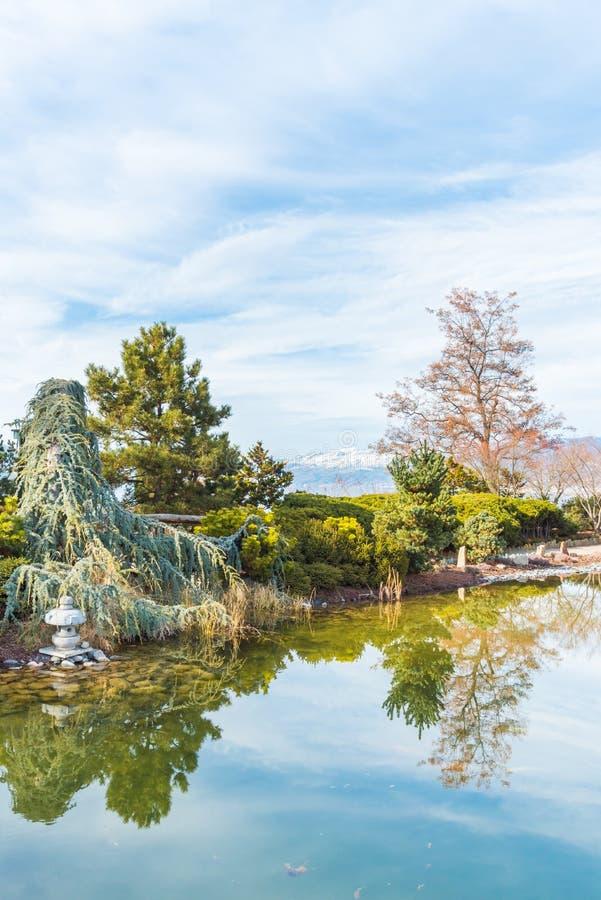 Ikeda Japanese Garden del Penticton Art Gallery en primavera temprana imágenes de archivo libres de regalías
