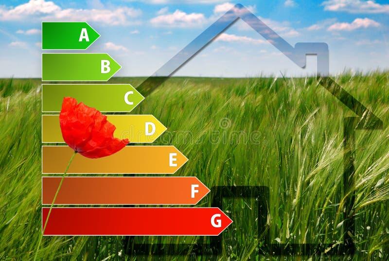 Ikona domowa wydajności energii ocena z maczkiem, domem i zieleni tłem, ilustracja wektor