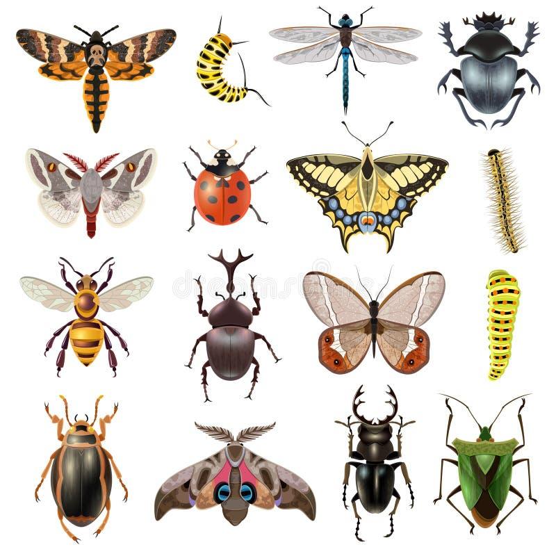 ikona insekty ustawiają ilustracji