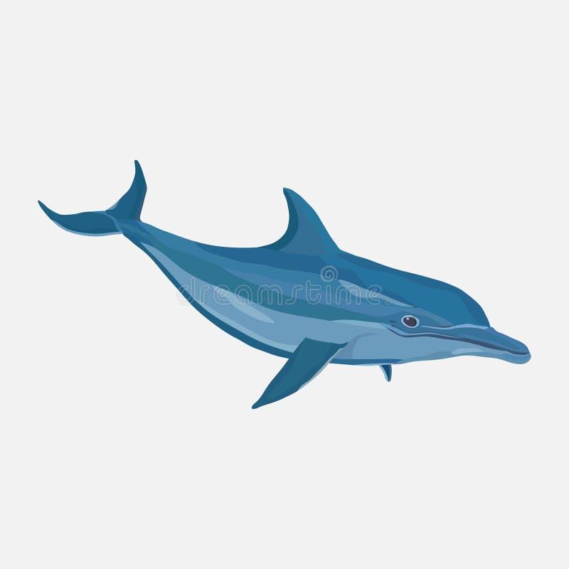 Ikona realistyczny delfin, woda park, rozrywka royalty ilustracja