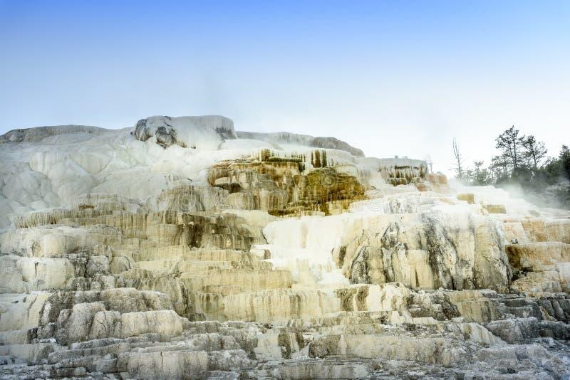 Ikonenhaftes dämpfendes geothermisches Mammoth Hot Springs auf Yellowstone Nationalpark lizenzfreies stockfoto