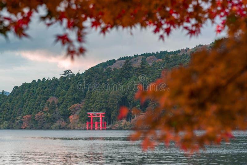 Ikonowa czerwona brama Hakone jinja świątyni pozycja w Jeziornym Ashi z zamazanymi czerwonymi liśćmi klonowymi zdjęcia stock