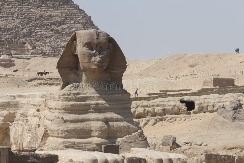 Ikonowy, antyczny i królewski, - sfinks, Kair Egipt obraz royalty free