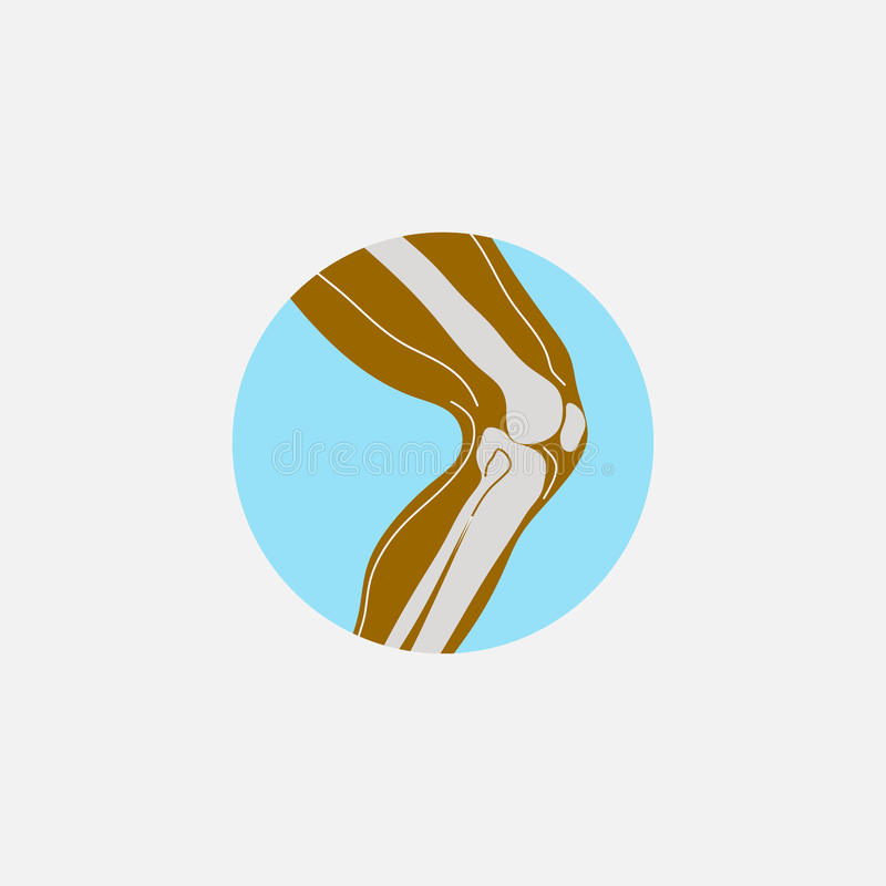 Ikony noga, stopa ilustracji
