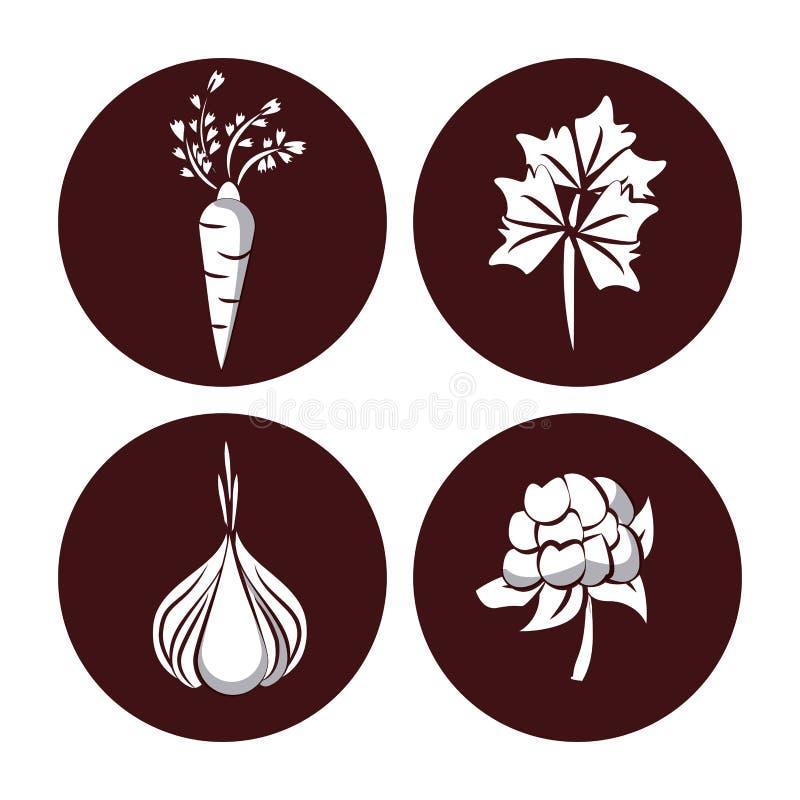 ikony ustawiają warzywa royalty ilustracja