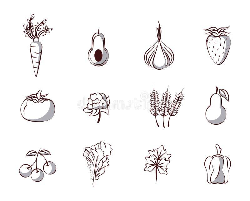 ikony ustawiają warzywa ilustracji