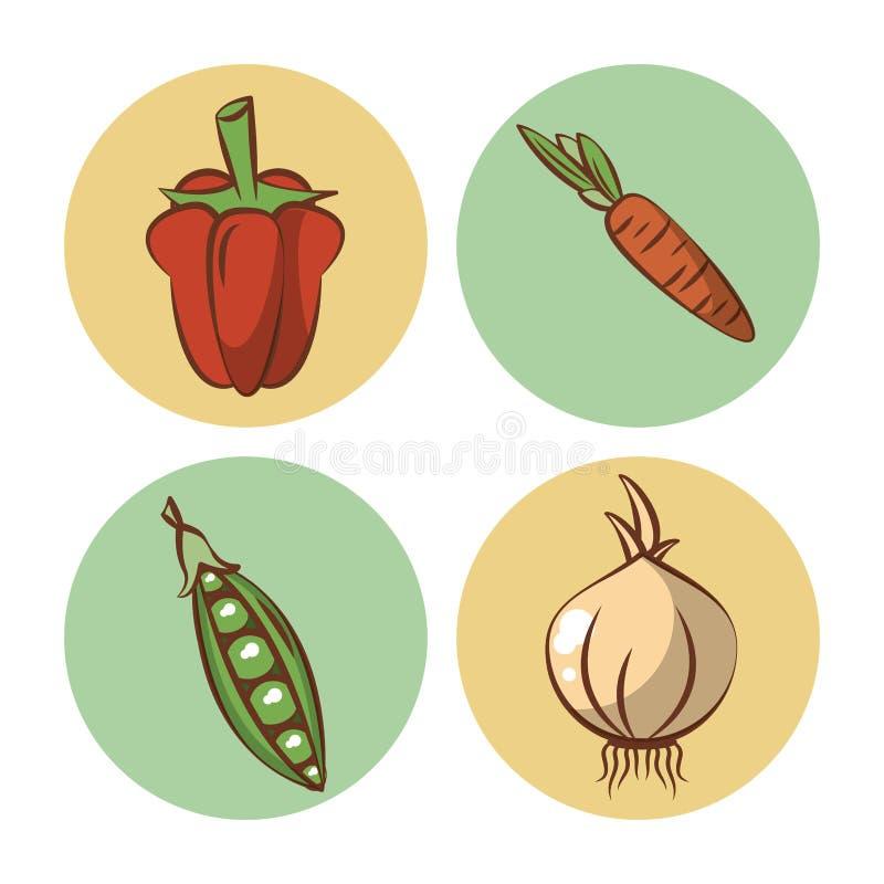 ikony ustawiają warzywa ilustracja wektor