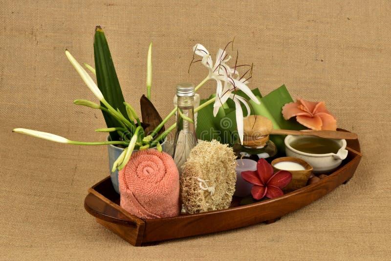 Il asiaticum di Crinum, gel delle foglie verdi ha medicina della proprietà immagini stock