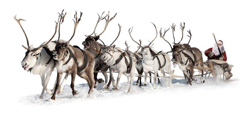 Il Babbo Natale in una slitta fotografia stock libera da diritti