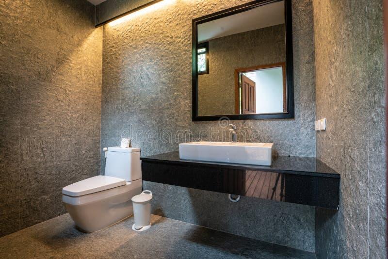 Il bagno di lusso caratterizza il bacino, ciotola di toilette fotografie stock libere da diritti