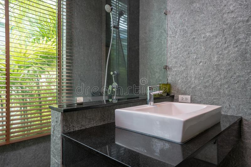 Il bagno di lusso caratterizza la toilette del bacino con la testa di doccia fotografia stock libera da diritti