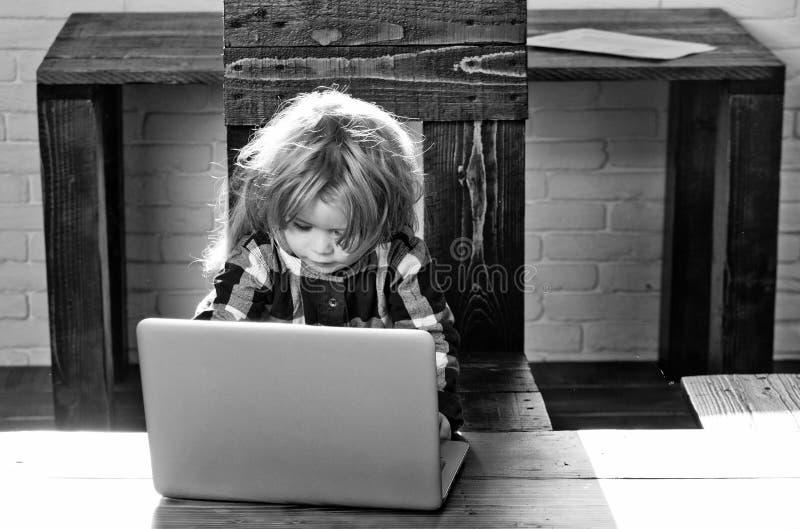 Il bambino è occupato lavorare al computer portatile piccolo lavoro serio del ragazzo del bambino al computer con lo strato di ca immagini stock