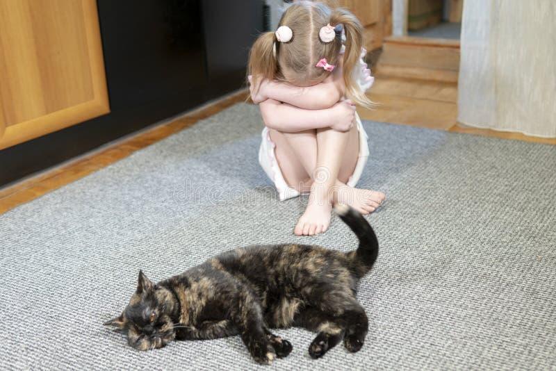 Il bambino è stato offenduto dal gatto fotografie stock libere da diritti