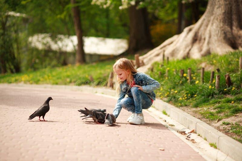 Il bambino allegro amichevole della ragazza alimenta i piccioni nel parco dell'estate della città fotografia stock