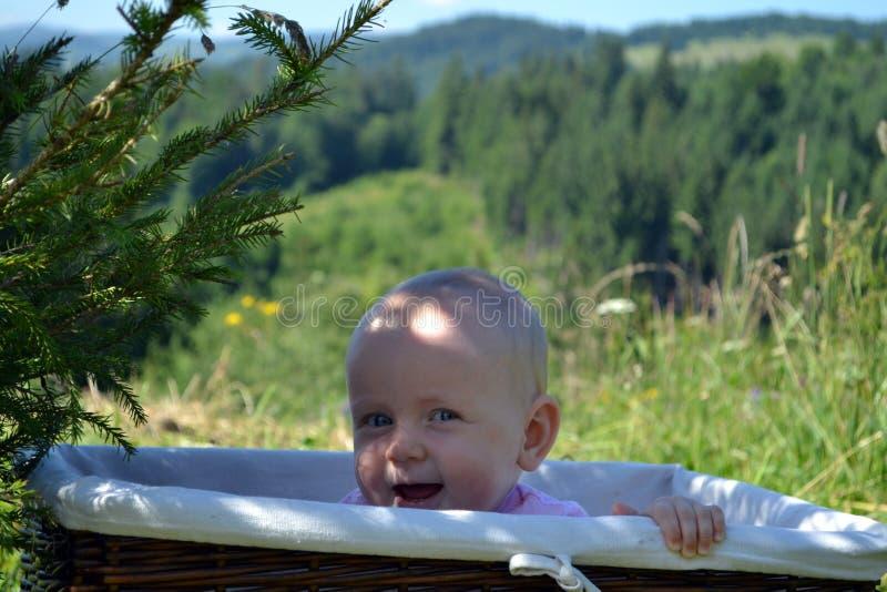 Il bambino di risata si nasconde in un canestro di vimini immagine stock libera da diritti